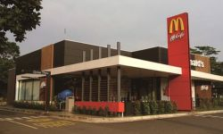 More than 500 units of Mc Donalds Store